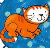 Pisi Kedi